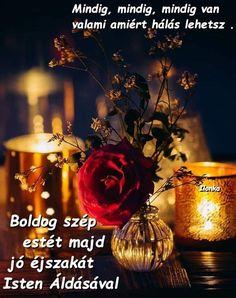 Minion, Hungary, Good Night, Whiskey Bottle, Nighty Night, Minions, Good Night Wishes