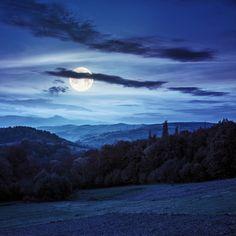 village on hillside behind forest in mountainl at night