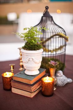 Collected bird cage and books centerpiece, eclectic