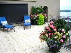 Seasonal Color Pots LLC, An Award Winning Seattle Landscaping Company,  Offers Exterior And Interior Container Garden Design.