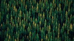 Forest – Green Alt