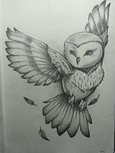 Resultat d'imatges de dibujos buhos volando