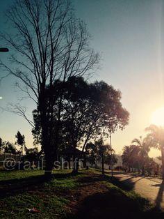 Horizon  Algumas imagens falam por si só  #park #brazil #zonaleste