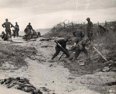Members of the 87th Chemical Mortar Bn du Lt Col. James H. Batte, dans les dunes de Saint-martin-de-Varreville, Utah Beach, get ready to fire high explosive mortar shells at a german pillbox. Photo prise le 10 juin 1944.