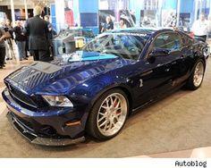 Shelby 1000,no words necessary.