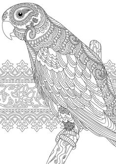 Zentangle colouring page for Redan's Calm Colour Create magazine.