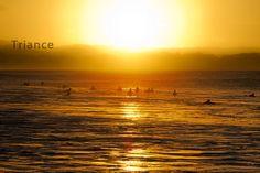Sunset Surfers.