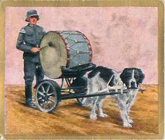 N°243 World War German Soldiers Drum Dog Music Reichswehr Germany WWI 30s CHROMO