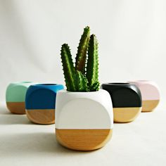 Geometric Succulent Cactus Planter by seaandasters on Etsy