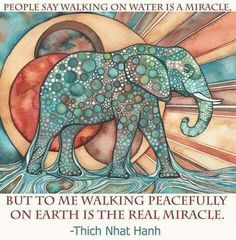 People say walking on water is a Miracle ~ but to me, Walking Peacefully on Earth is the Real Miracle ༺❁༻ Thich Nhat Hanh .. WILD WOMAN SISTERHOOD™ #wildwomansisterhood #thichnhathanh