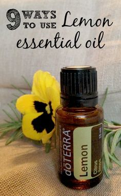 My Favorite Lemon Essential Oil Uses – MomPrepares