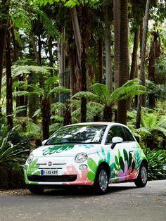 Georgia Perry x FIAT for The Design Files Open House 2014 — The Design Files | Australia's most popular design blog.
