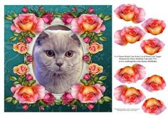 8 x 8 Shaun British Lilac Cat Roses Topper Decoupage on Craftsuprint designed by Elaine Sheldrake - Everyone loves a British Lilac kitty cat and this one is gorgeous. Framed by beautiful roses this lovely cat is sure to melt the hearts of everyone who loves cats. This 8 x 8 card topper can easily be made smaller by simply printing two of these sheets onto A4 photo paper. - Now available for download!