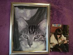 Stitch your photo! Sticke dein Foto! Mein geliebter Kater Teddy :-) My beloved cat Teddy! your stitch box deine Stickbox Lounge, Box, Frame, Home Decor, Pictures, Airport Lounge, Picture Frame, Drawing Rooms, Snare Drum