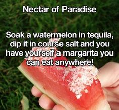 75 of the Greatest Life Hacks - margarita watermelon (grown up parties only!)