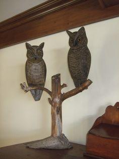 Owls. Leonard Doren. Pekin Illinois. Balsa on an old branch. Pretty neat.