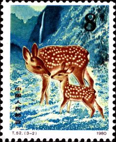 deer from China