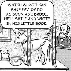 Oh psychology humor- now who's really training who... ;-)