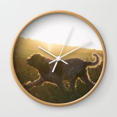 Brown Roan Italian Spinone Dog Wall Clock by Heidi Anne Morris. Worldwide shipping available at Society6.com. Just one of millions of high quality products available.