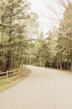 Being a Tourist In: Maine + Road Trip Playlist – Allison in Wonderland