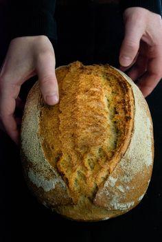Durum wheat semolina & Tritordeum bread #bread #sourdough #homemade #homemadebread