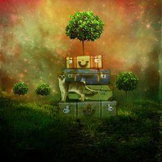 surreal-artwork-photo-manipulation-08