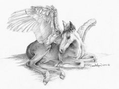 Baby Pegasus Original Drawing by DLysons on Etsy . I purchased a print of this drawing from the artist and my husband loved it so much once it was framed that it hangs in his office. Horse Drawings, Animal Drawings, Art Drawings, Horse Sketch, Wings Drawing, Winged Horse, Unicorn Horse, Horse Art, Mythical Creatures