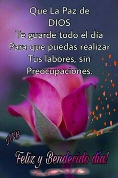 healthy living quotes motivational messages without women Good Morning In Spanish, Good Morning Funny, Good Morning Messages, Good Morning Good Night, Boy Quotes, Wisdom Quotes, Quotes To Live By, Morning Love Quotes, Morning Greetings Quotes