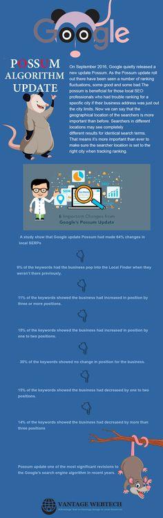 Google Possum Infographic