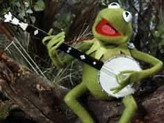 """Kermit the Frog (Jim Henson): [singing] """"Someday we'll find it, the rainbow connection / The lovers, the dreamers, and me."""" -- from The Muppet Movie directed by James Frawley Gym Memes, Gym Humor, Workout Humor, Funny Memes, Fitness Humor, Fitness Motivation, Meme Meme, Funny Fitness, Fitness Quotes"""