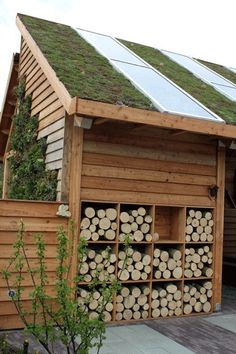 Don't underestimate the creative ways to put the outside of your shed to use too.