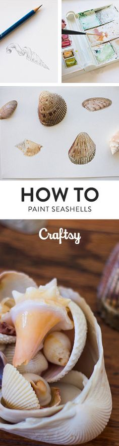 Love seashells? Here's a step-by-step tutorial for how to paint them with watercolors. @craftsy