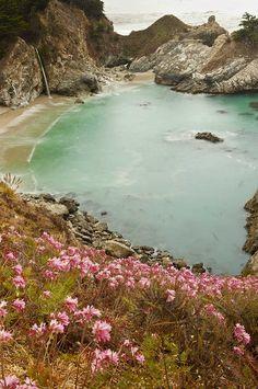 ✯ Pfeiffer state beach in California