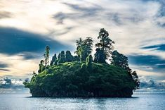 I was mesmerized by this little island near to the Kitikiti waterfall.  #WonderfulIndonesia  @sonyindonesia #rx100v  A trip with @sequoia_yacht  @taniasmagicaltravels @trinitytraveler @tommyschultzphoto