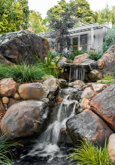 A small backyard waterfall that we built.