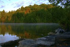 Sharbot Lake Provincial Park in Ontario. The point in Black Lake looking in a southward direction. Kayak, The Province, Making Memories, Dog Friends, Ontario, Places Ive Been, Travel Inspiration, Destinations, Places To Visit