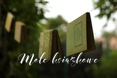Mole, Place Cards, Place Card Holders, Projects, Log Projects, Mole Sauce, Blue Prints