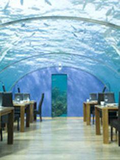 9 Remarkable Underwater Attractions