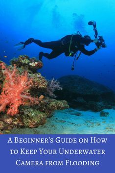 When your camera floods, a great dive can turn into an expensive one. Here's our beginner's guide on how to keep your underwater camera from flooding.