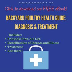 Free eBook for backyard poultry first aid. Great resource with tons of information. Be prepared and download today!
