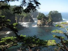 Cape Flattery, WA, USA (Summer mountains trees water waves ). Photo by vltava