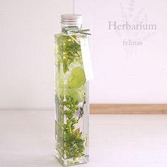 ハーバリウム[角瓶グリーン(緑),1本]プリザーブドフラワー ドライフラワー 花 バレンタイン ホワイトデー 誕生日 お祝い 母の日 フラワーギフト プレゼントに最適です Herbarium/green