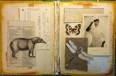 Altered book cover tapir ephemera