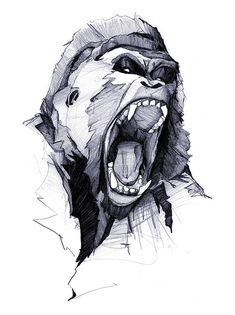 Wild Rage | Flickr: Intercambio de fotos