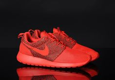 Nike Roshe Courir Chambres Safari Rouge Haut De Gamme