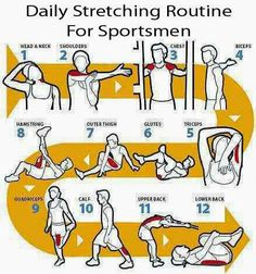 Queue Farms  Daily stretching routine for sportsmen