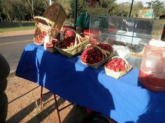 Frutillas de Aregua