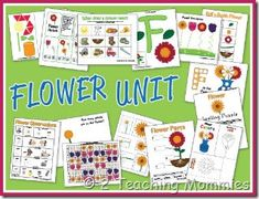 Flower Unit - Free Printables    *Patterns  *Letter Sort  *Size Sort  *Number Order Puzzle  *How Many Flower Petals?  and more...