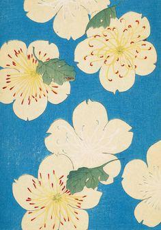Shin Bijutsukai - balance of detail/blank, positive/negative space