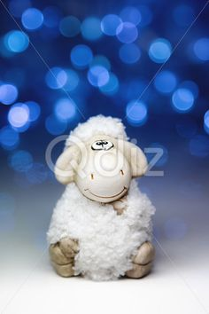 Qdiz Stock Photos | Sheep the symbol 2015 year,  #2015 #asia #background #blur #blurred #celebrate #celebration #character #china #chinese #closeup #concept #culture #decoration #doll #east #ewe #festival #festive #figure #fun #funny #greeting #holiday #japanese #jumbuck #lamb #light #little #mutton #new #religion #sheep #small #symbol #toy #tradition #traditional #white #year #zodiac